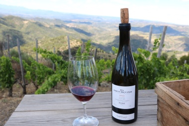 Several important critics have rated this Priorat wine highly: The Wine Advocate gave the 2009 vintage a score of 95 and Wine Spectator gave the 2011 vintage a score of 93. This is the second most expensive wine made from Grenache - Syrah in Priorat. The price has been stable over the past year. Above average in popularity among wines from this region. Greater numbers of users have been searching for this wine compared to a year ago.